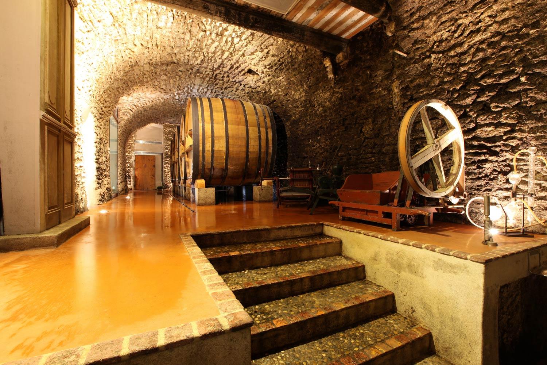 I hjärtat av byn Châteauneuf du Pape ligger Vignobles Mayards vinkällare. Där kan man se resterna av ett stenvalv från ett 1700-tals chateau elegant bryta av mot en modern interiör.